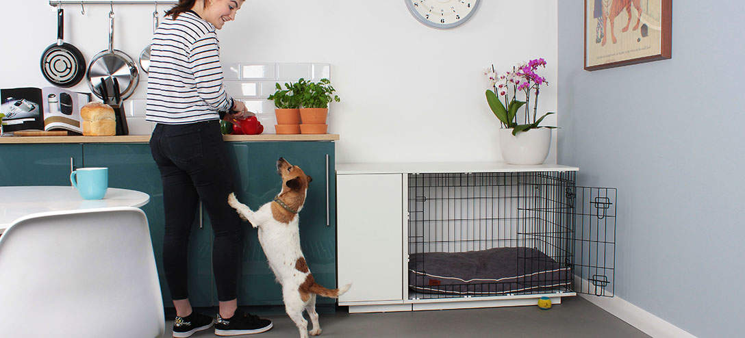 The Omlet Fido Studio looks great in any room in the house