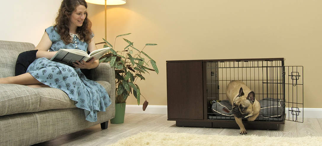 An Omlet Fido Studio in walnut will look great in your living room
