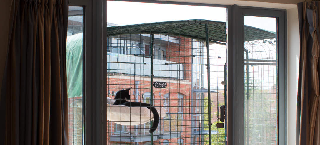 Your cat will soon feel at home in their new outside environment as they relax and watch the world go by