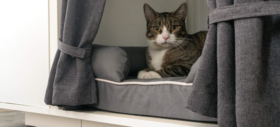 By raising your cat's bed off of the ground the Maya Nook Indoor Cat House offers protection from draughts and other unwanted disturbances