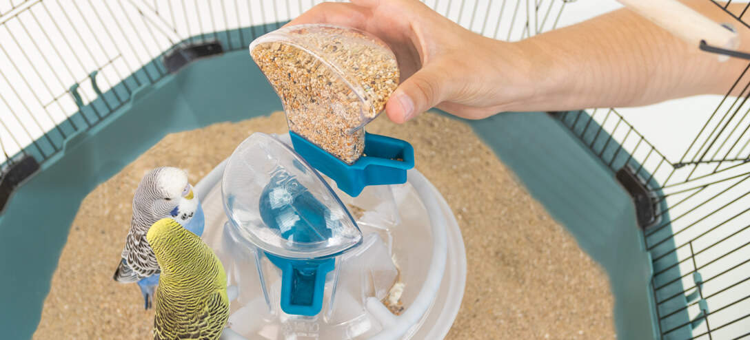 The beautifully integrated central bird feeder offers 360 degree refreshment for your pet birds. The food and water containers simply drop into place.