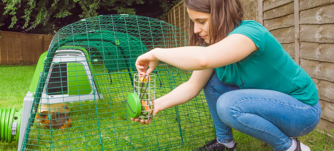 Cleaning and refilling your Caddi Guinea Pig Treat Holder is quick and easy. Simply detach the feeder from the plastic hook and fill or clean as required!