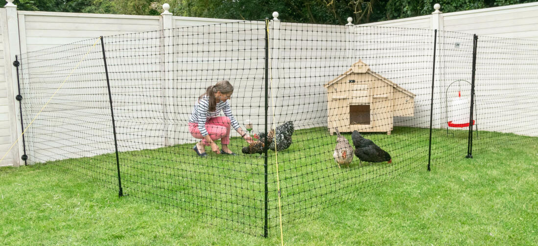 The large chicken coop houses up to 12 chickens, and can be moved around the garden when your chickens need a new patch of grass.