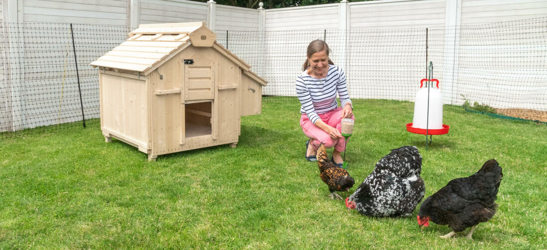 The Lenham chicken coop is the perfect combination of traditional style and modern features that both you and your pets will love.