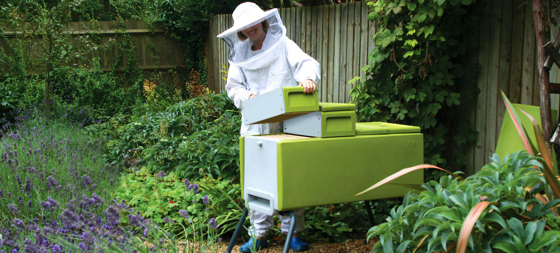 Beekeeper adding supers to green Beehaus beehive