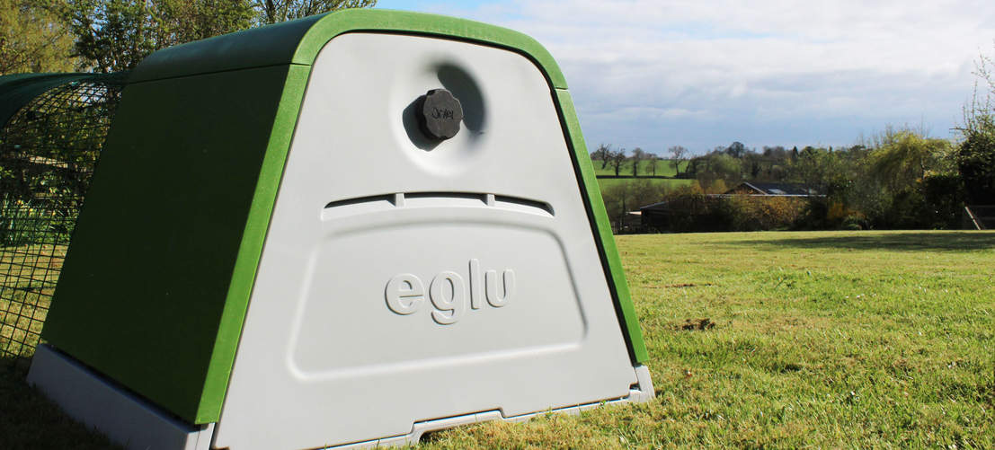 The back door of the Eglu Go gives easy access to the nesting box