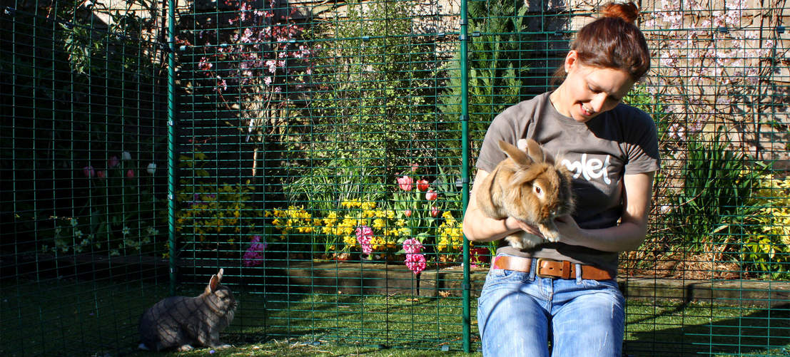 The hi-rise rabbit enclosure is high enough for you to stand in, with lots of room to sit and play with your pets.