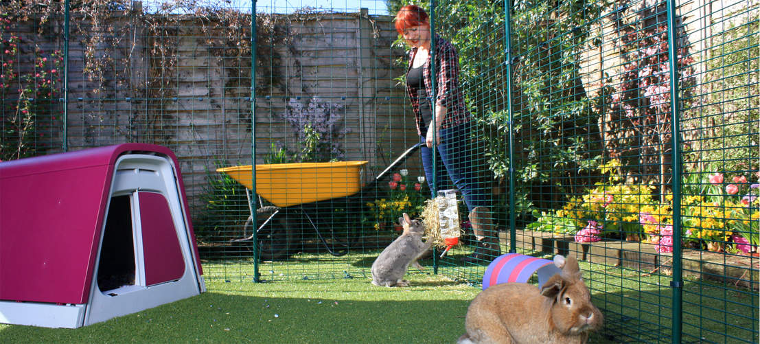 An Outdoor Rabbit Run provides your pet bunnies with lots of safe outdoor space.
