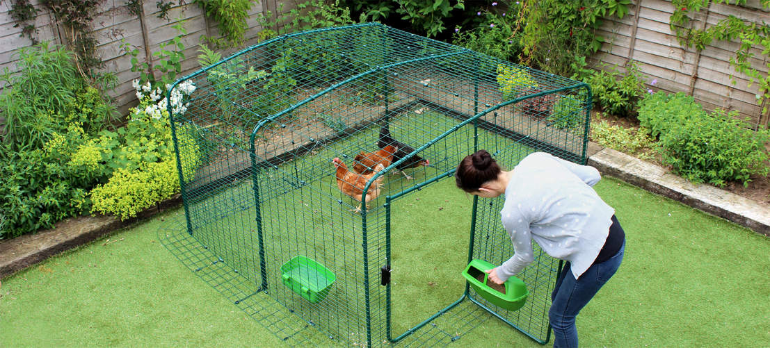 2x2x1 Walk in Chicken Run - attaching feeder through door