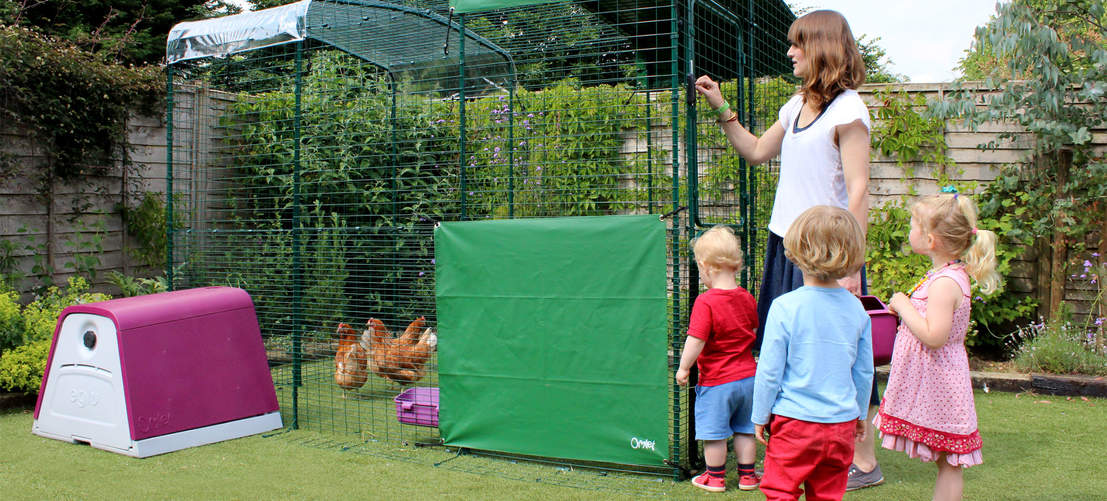 2x3x2 Walk in Chicken Run attached to Eglu Go Chicken Coop - family spending time with chickens