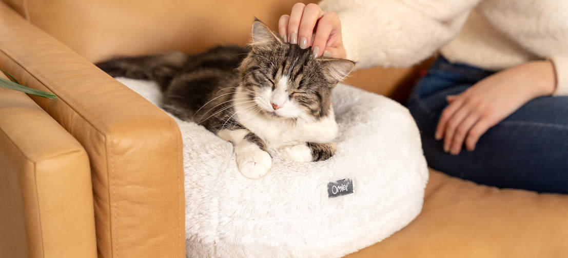The cat bed's supportive donut cushion holds its shape for a long lasting, warm and cuddly feeling.