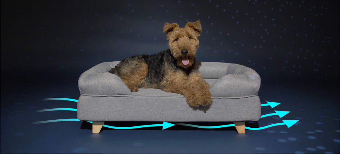 Raising the bed off the ground keeps it tidier and more hygienic for your dog by improving airflow and minimising a buildup of dust and debris.