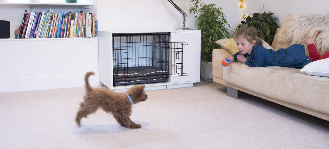 Experts agree the fastest and most reliable puppy training method is to use a dog crate