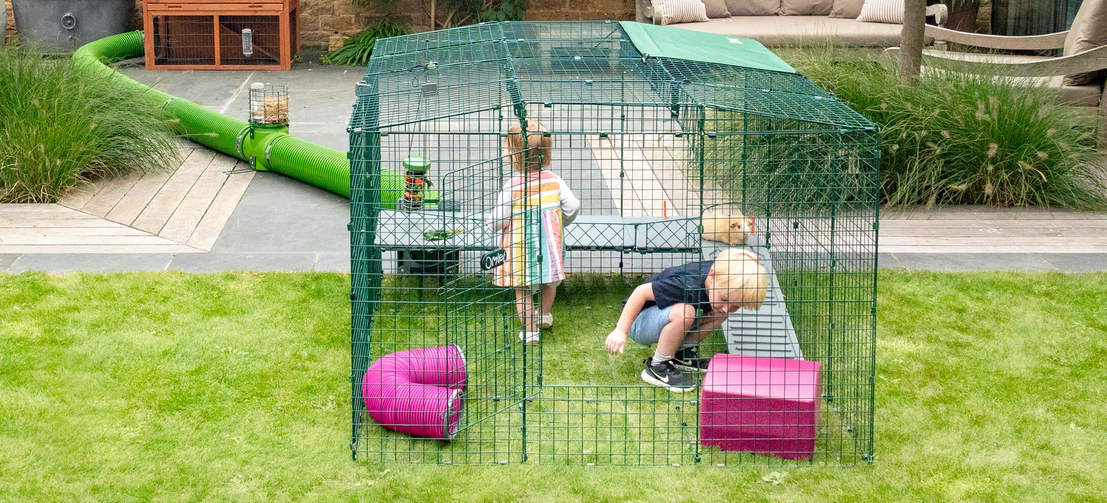 Zippi Platforms offer fun for all the family and a new way for everyone to play and interact with their guinea pigs.