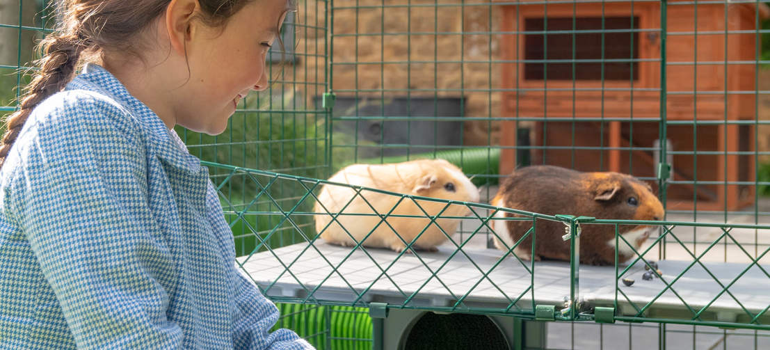 Children will love being able to interact and bond with their pets at eye level.