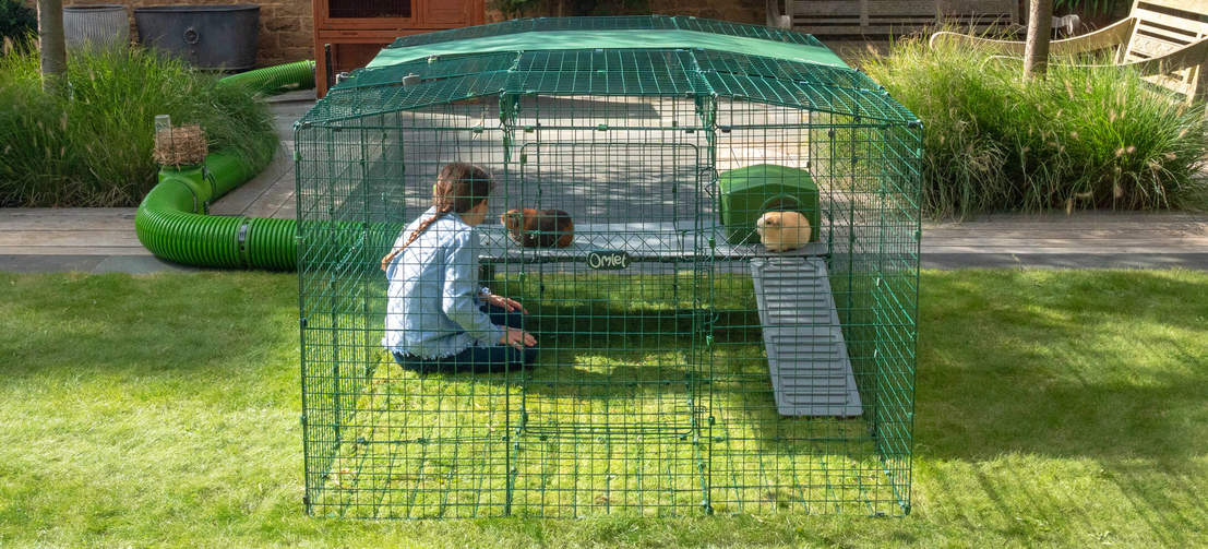Give your guinea pigs more space by adding a second level to your Zippi Run with Zippi Platforms.