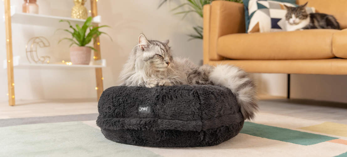 The donut cat bed moulds around your cat's body as they sink into the cushion, like Sammy here who weighs 5kg.