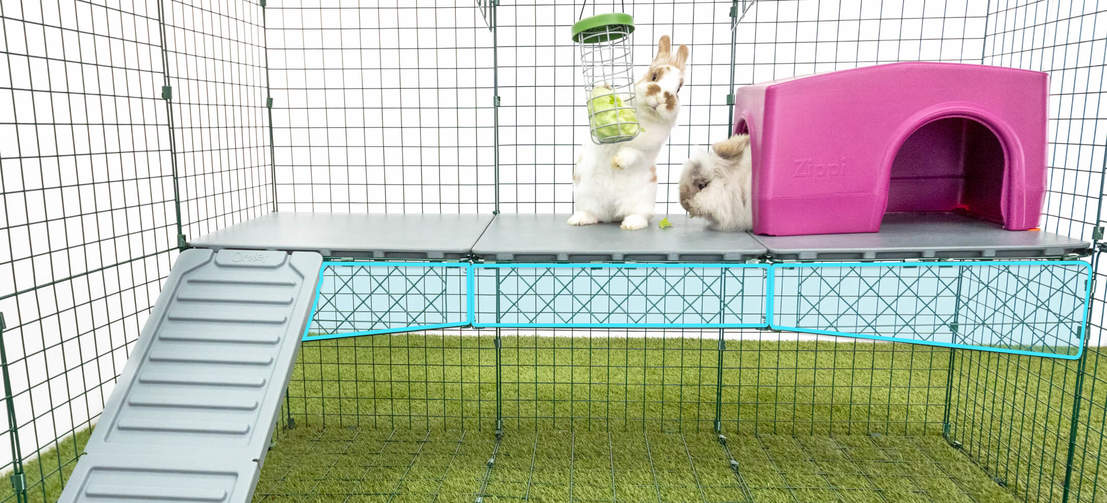 Zippi Platforms come with strong wire supports to ensure they don't flex or bend when your rabbits are on them.