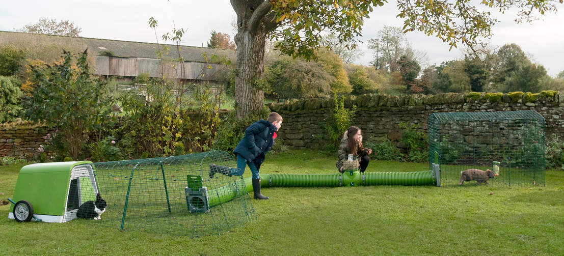 Zippi Rabbit Runs are great for kids to spend time playing and bonding with their pets all year round.