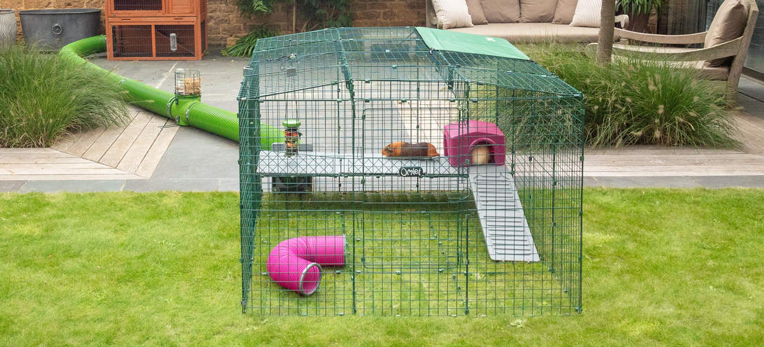 Further accessorise your guinea pig's run with Zippi Shelters, Play Tunnels and Caddis placed above and below the platforms.