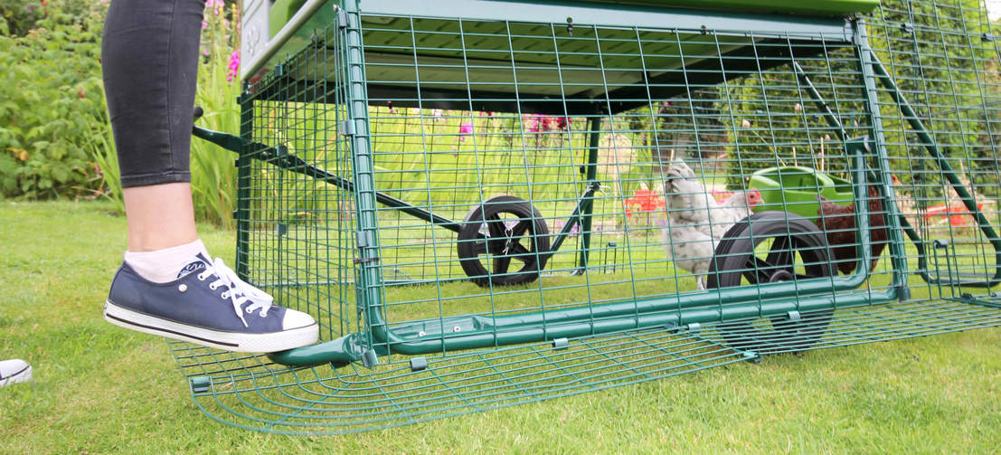 The optional wheels make it super easy to move this large chicken coop to a new patch of grass.