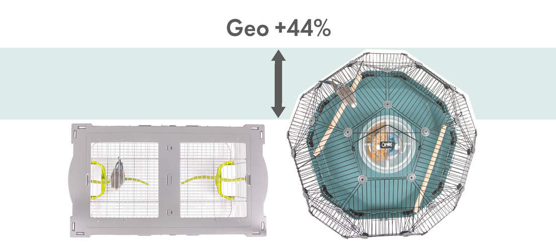 With 44% more space than a traditional rectangular cage, the Geo Bird Cage gives budgies, finches and canaries room to fly in all directions