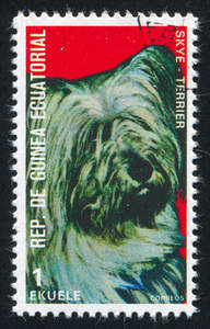 A Skye Terrier on a West African stamp