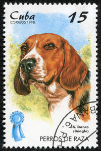 A Beagle on a Cuban stamp