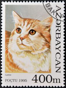 a stamp from azerbaijan with a cymric printed on it