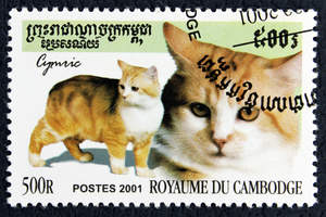 A stamp from cambodia with a cymric printed on it