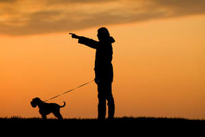 A silhouette of a Miniature Schnauzer and it's owner