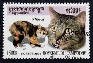 postage stamp with a tortie Manx cat on it