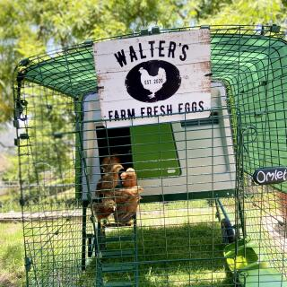 We love our Omlet chicken coop!