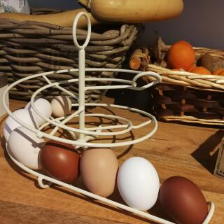My Marans, Siciliana, Livorno, Lakenfelder, Vorwerk and Mugellese eggs