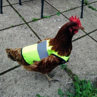 A very smart High-vis Jacket!