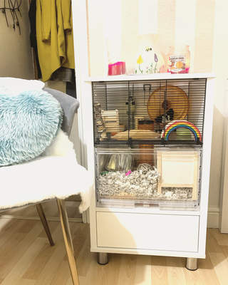 Perfectly fits in with the room decor and Dora the hamster loves it for burrowing.