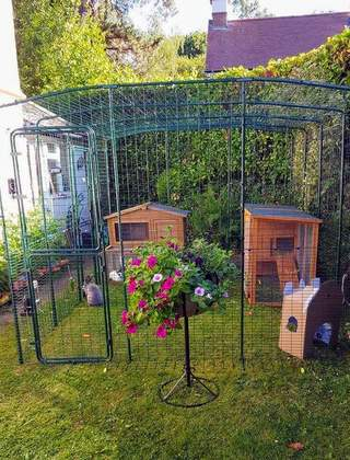 Home for two lovely bunnies