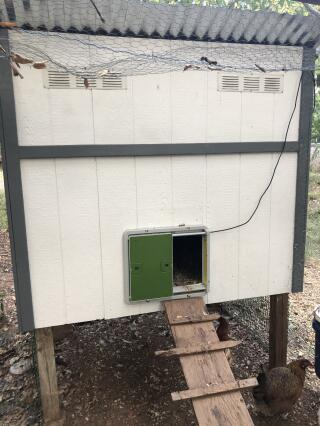 Looks so cute on our new coop and it works like a charm!