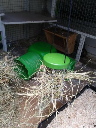 Not just for Chickens, brilliant hanging hay rack for bunnies