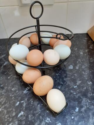 Looks amazing with all our different coloured eggs, a real kitchen feature!