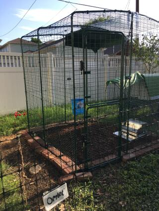 Fence in foreground + Enclosed yard + Eglu Go-up