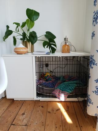 Lovely 'bedroom' for my dog!