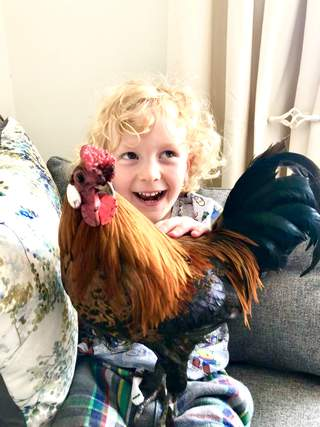 Arthur and Boris the Bantam