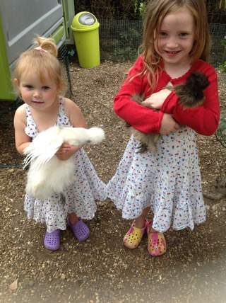My daughters & their silkies
