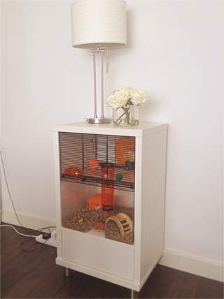 A stylish cage! We love ours in the lounge!