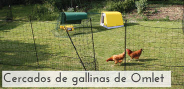Omlet Chicken Fencing With Gate Homepage Tile ES