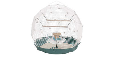 Boxed Cage Budgie Teal - White
