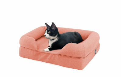 Memory Foam Bolster Cat Bed Small - Peach