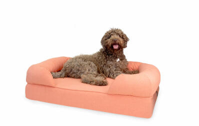 Memory Foam Bolster Dog Bed Large - Peach