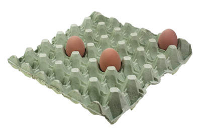 Egg Trays - Green Pack of 8